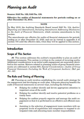 Sample Planning an Audit Template