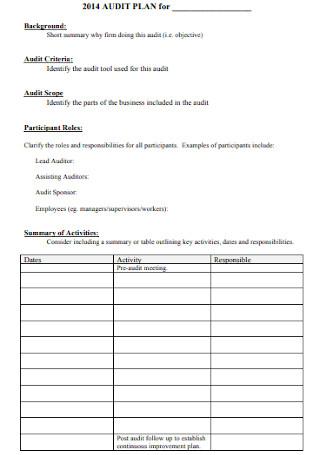 Simple Audit Plan Template