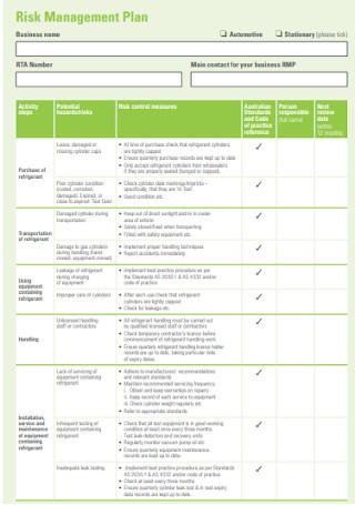 Standard Risk Management Plan Template