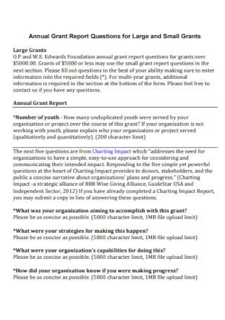 Annual Grant Report Template