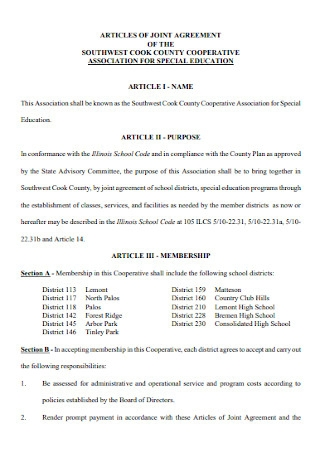 Articles of Jiont Agreement