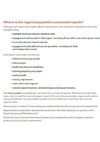 Basic Assessment Report Template