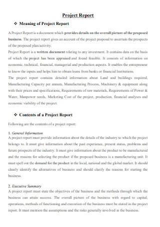 Basic Project Report Template