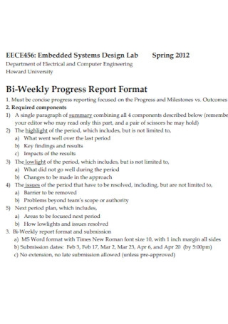 Bi Weekly Progress Report Format