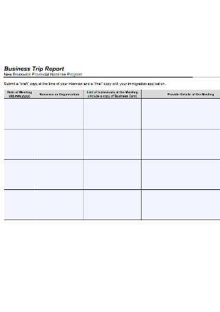 Business Trip Report Template from images.sample.net