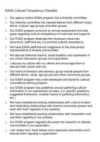Cultural Competency Checklist