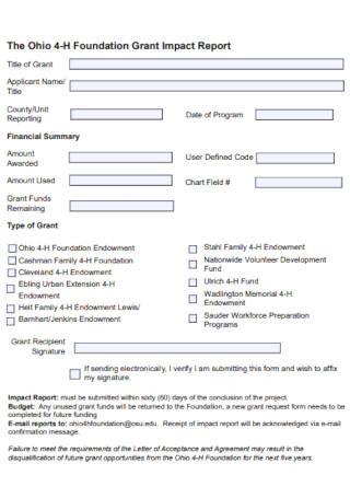 Foundation Grant Impact Report