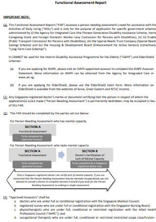 Functional Assessment Report