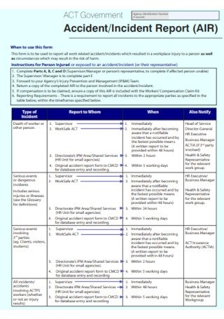 Government Incident Report Form