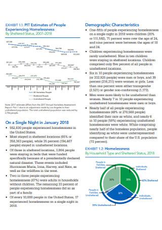 Homeless Assessment Report