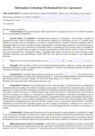 IT Professional Services Agreement