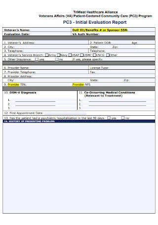 Initial Evaluation Report