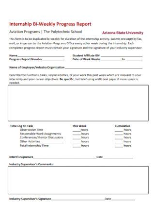 Internship Bi Weekly Progress Report