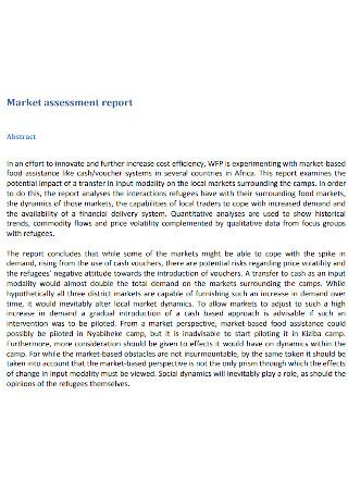 Market Assessment Report