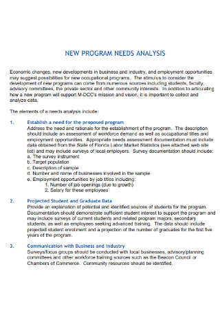 New Program Needs Analysis