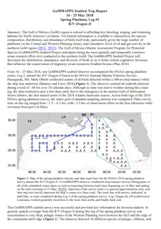 Seabird Trip Report