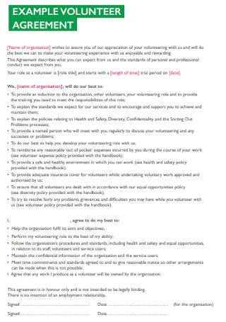 Volunteer Agreement Example