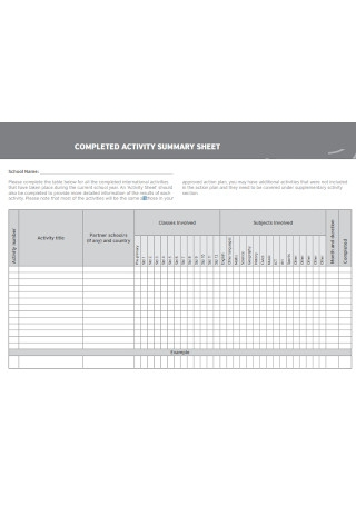 Activity Summary Sheet
