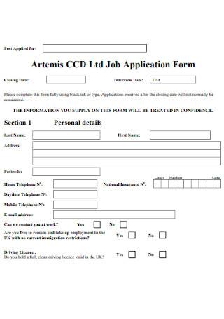 Company Job Application Form Template