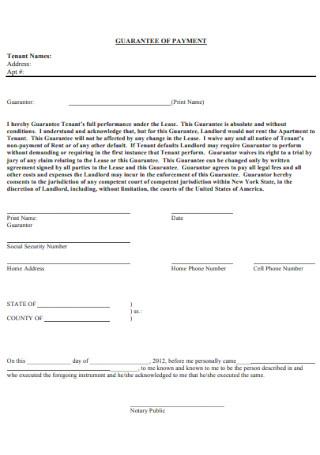 Guarantee Payment Form