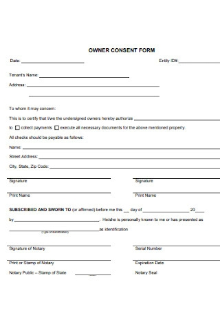 Owner Consent Form