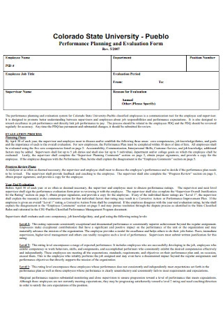 Performance Planning and Evaluation Form