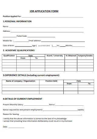 Professional Job Application Form