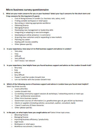 Business Survey Questionnaire