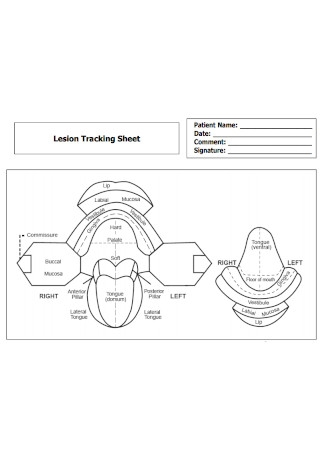 Lesion Tracking Sheet
