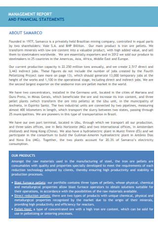 Management Financial Statement