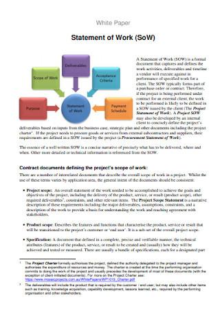 Paper Statement of Work