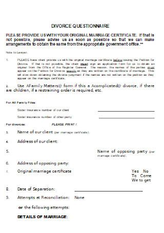 Standard Divorce Questionnaire Example