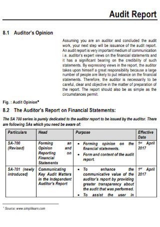 Audit Financial Report Template