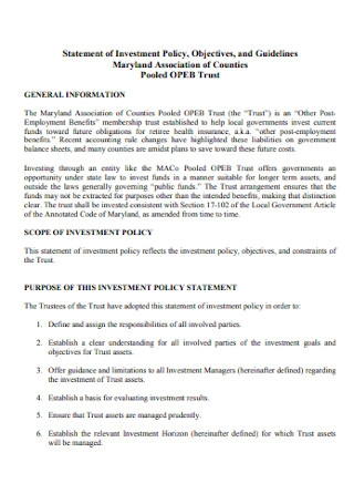Statement of Investment Policy Example