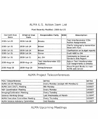 Action Item List Example