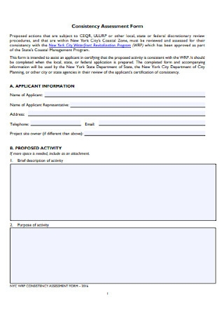 Consistency Assessment Form
