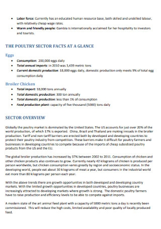 Poultry Investment Proposal Template