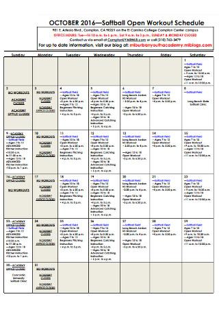 Softball Open Workout Schedule