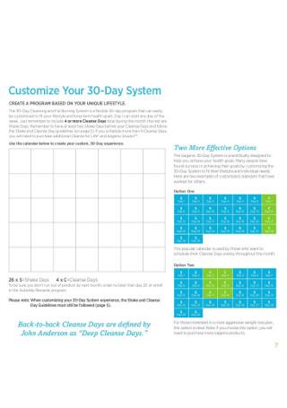 30 Day System Plan