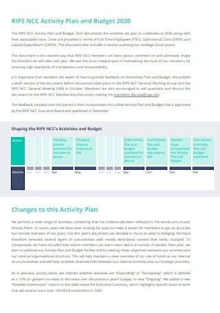 Activity Plan and Budget Template