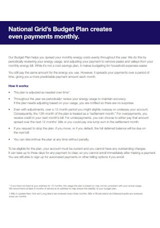 Budget Payment Plan Template