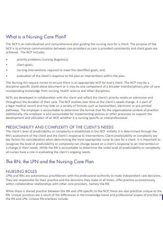 College Nursing Care Plan