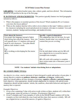Daily Lesson Plan Format