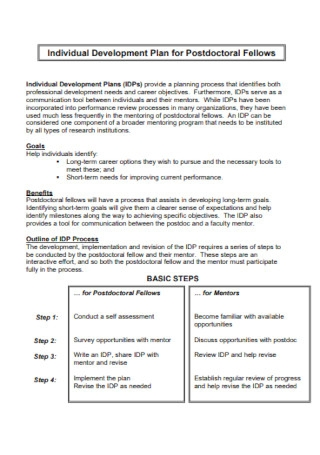 Development Plan for Postdoctoral Fellows
