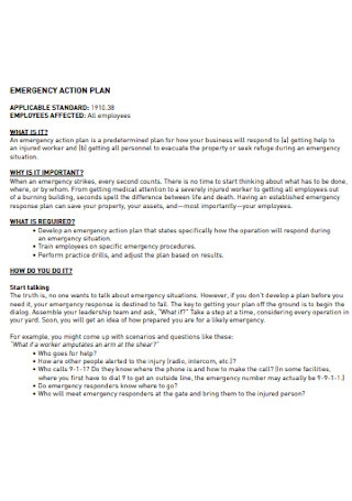 Emergency Safety Action Plan
