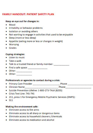 Family Patient Safety Plan