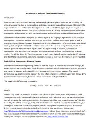 Individual Development Plan Example
