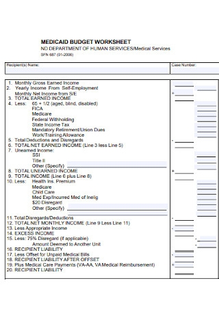 Medicaid Budget Worksheet