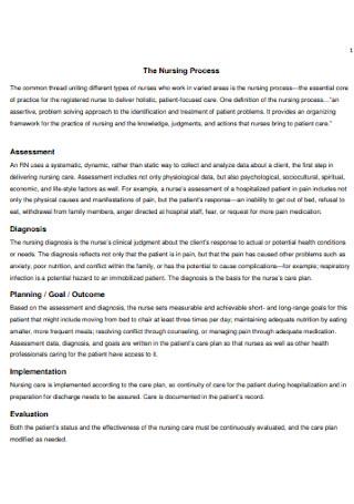 Nursing Process Care Plan