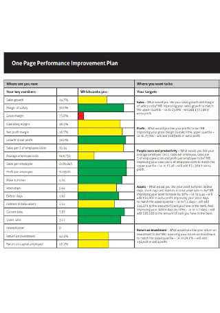 One Page Performance Improvement Plan